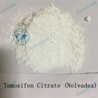Oral Steroids Tamoxifen Citrate (Nolvadex) Raw Powder 99.7% Purity thumbnail image