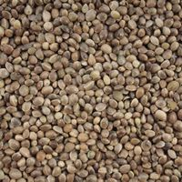Hemp Seeds, Poppy Seed, Pumpkin Seeds, Sesame Seed thumbnail image