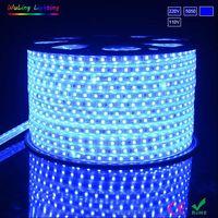 220V or 110V voltage flexible led strip light of Chinese manufacturer factory