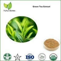 green tea extract,green tea extract powder,egcg,tea polyphenol thumbnail image