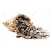 coin bag thumbnail image