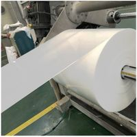 0.2mm eco-friendly rigid plastic PP color sheet film for thermoforming