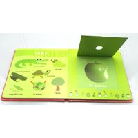 Custom Board Book Printing
