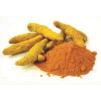 Turmeric Curcuma Extract