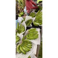 Banana from Vietnam for export