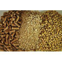 soya beans meal (Non GMO)