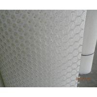 Plastic Plain Netting thumbnail image