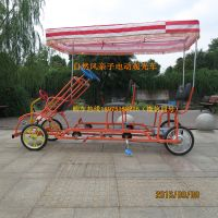 Leisure Four-Wheel/Sightseeing Two Seat Quadricycle Bike/4-Wheeled Pedal Vehicle thumbnail image