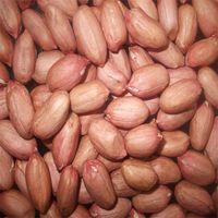 High Quality Grade Peanuts