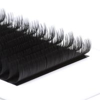 CharmLash False Eyelashes Mink Silk Eyelash Extensions