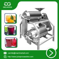 DJ Type Double-channel beater for mango fresh juice making machine thumbnail image