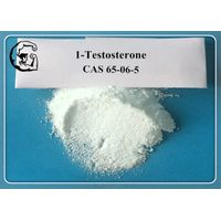 White Powder Testosterone Anabolic Steroid 1-Testosterone CAS 65-06-5