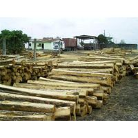 Teak rough squares logs thumbnail image