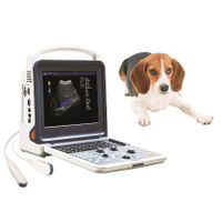 Vet Use Portable Ultrasound Scanner