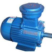 Environment-friendly dust explosion-proof motor can be customized vertical and horizontal flameproof thumbnail image