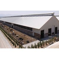 Prefabricated Steel Structure Poultry House Shed