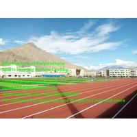 Popular Sandwich System Stadium Running Track Construction