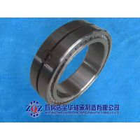 SL-01/02 Series double row full complement cylindrical roller bearings thumbnail image