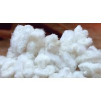 Reclaimed Fluff Pulp thumbnail image