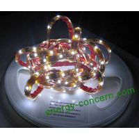 LED Waterproof Flexible Strip with 5060 SMD LEDs