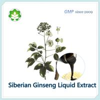 0.3-1.0% organic acanthopanax root liquid extract fluidextract l.e