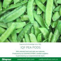 IQF pea pods/IQF snow peas/Frozen pea pods/Frozen snow peas thumbnail image