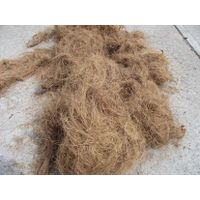 golden brown coconut fiber thumbnail image