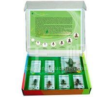 1713 Qianfan Teaching Aids for Kids Frog Development plastic toy thumbnail image