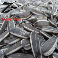 Inner Mongolia Long Shape Sunflower Seeds 5009 Hot sale by Factory directly