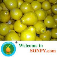 honey pomelo thumbnail image