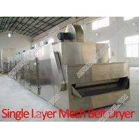 Mesh Belt Dryer