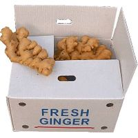 Fresh Ginger/Air Dried Ginger thumbnail image