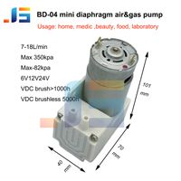 Multifunctional mini 12v24vmini air pumps booster pump for wholesales