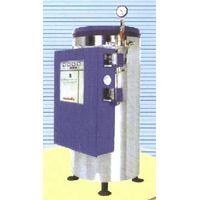 electric heating bearing pressure hot water boiler