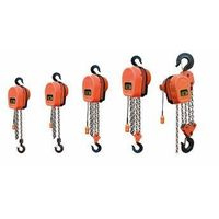 DHS Type Endless Chain Electric Hoists