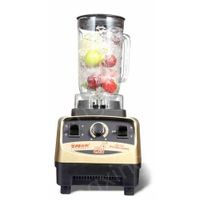 Commercial Juice Blender