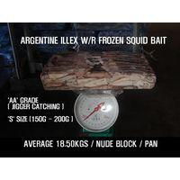 Argentinus Illex W/R Frozen Squid Bait