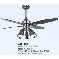 ASB Blade Ceiling Fan Light