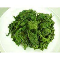 Sargassum/ Ulva lactuca/ Gracilaria/ E Cottonii/ Gracilaria power
