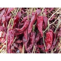 Dried red pepper/chilli