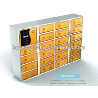 password card access electronic mailbox