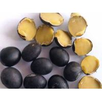 Black Soybean( yellow  inside)