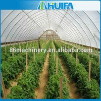 Low Cost Arch Steel Pipe Greenhouse Kits Grow Tent