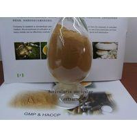 tremella fuciformis extract