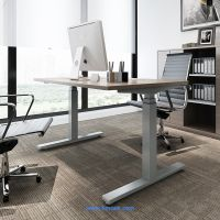 USA and Europe Market Height Adjustable Stand Up Desk Frame thumbnail image