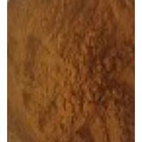 Giant knotweed Extract thumbnail image
