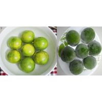 Frozen Lime From Viet Nam thumbnail image
