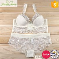 Hot images lace bra with transparent boyshort panty fancy lingerie panty bra