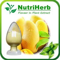 Natural Mango Leaf Exract 95% Mangiferin