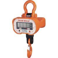 General Crane Scale